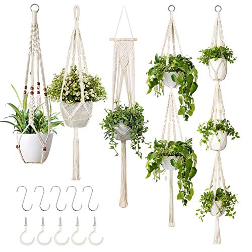 15% off 5 macrame plant hangers