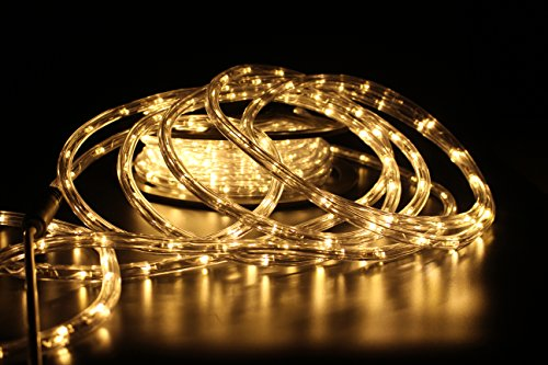 PYSICAL 110V 2-Wire Waterproof LED Rope Light Kit for Background Lighting,Decorative Lighting,Outdoor Decorative Lighting,Christmas Lighting,Trees,Bridges,Eaves (50ft/15M, Warm White)