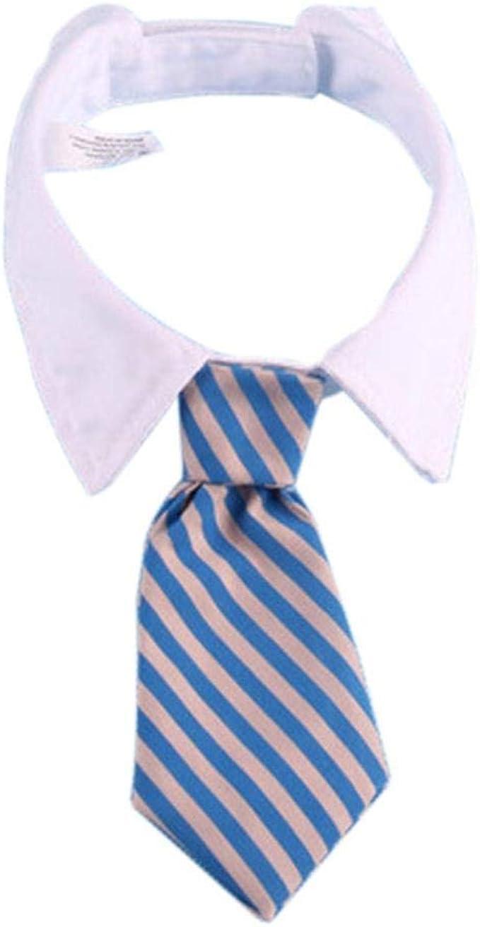 ZIMO Corbatas para Mascotas Corbata pequeña de algodón para ...