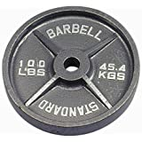 Troy Barbell USA Sports Gray Olympic Plate - 100 lbs.