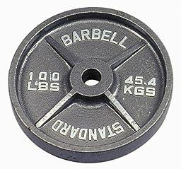 USA Sports Gray Olympic Plate - 100 lbs.