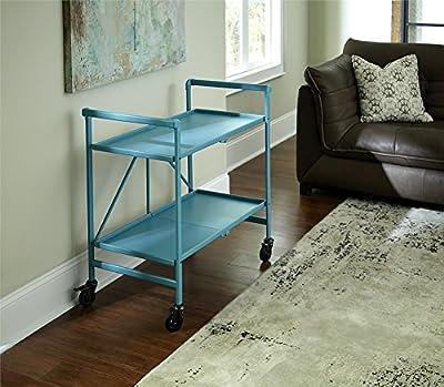 Indoor or Outdoor Folding, Metal, Rolling Serving