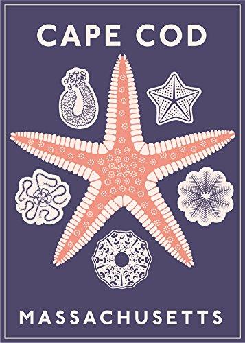 Cape Cod Starfish Magnet