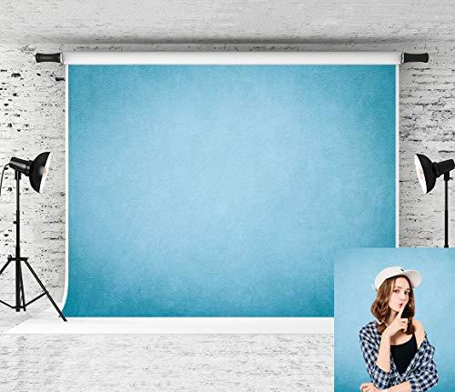 Portrait Muslin - Kate 10x10ft Blue Backdrop Portrait Backdrops Muslin Background Old Master Photo Backdrop