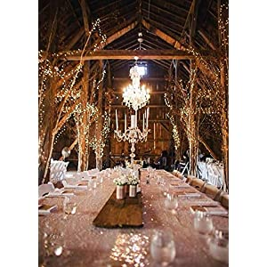 12APM 66 Ft 200LEDs Waterproof Starry Fairy Copper String Lights USB Powered for Bedroom Indoor Outdoor Warm White Ambiance Lighting for Patio Halloween Thanksgiving Christmas Party Wedding Decor