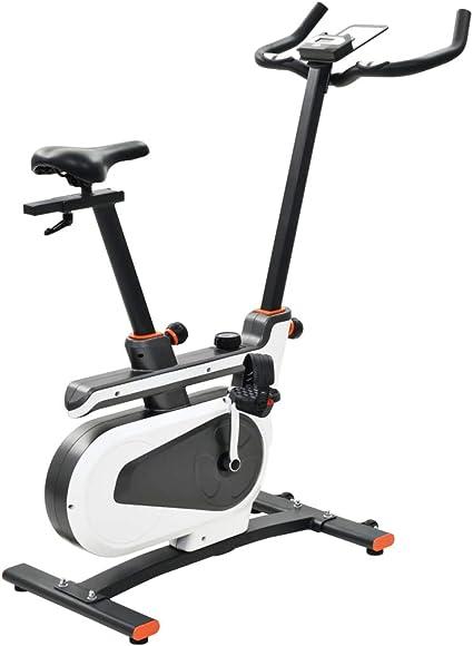 vidaXL Bicicleta Estática Masa de Rotación 8kg Pulso Fitness Gimnasio Deporte: Amazon.es: Deportes y aire libre