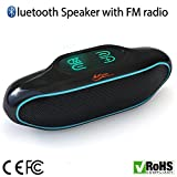 iFox IFS309 Wireless Portable Bluetooth Speaker for iPhone Review and Comparison