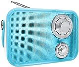 Polaroid PBT533 Retro Wireless Fm Radio and Bluetooth Speaker - Blue