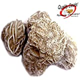 Set of 5 (Five) Large Raw Selenite Crystal Desert Rose Stones in Burlap Bag for Spiritual Metaphysical Healing and Enhancement w/ Certificate of Authenticity Beverly Oaks Exclusive