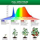 SANSI Grow Light Bulb with COC Technology, PPF 65.6