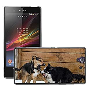 Hot Style Cell Phone PC Hard Case Cover // M00113962 Border Collie Hybrid Playing Dogs // Sony Xperia Z L36H C6603