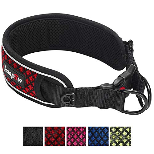 haapaw Heavy Duty Dog Collar