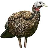 AvianX Breeder Turkey Decoy, Camo (Pack of 3)