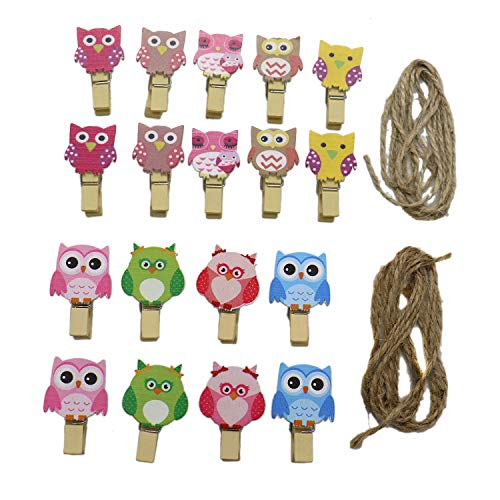 HUELE 36 Pcs Colorful Cute Owl Wooden Photo Clips Paper Clothespins with Hemp Rope -