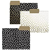 Graphique Gold Dots File Folder Set - File Set Includes 9 Folders with 3 Unique Polka Dot Designs, Embellished w/Gold Foil on Durable Triple-Scored Coated Cardstock, 11.75'' x 9.5''