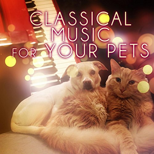 Classical Music for Your Pets - Soothing Music While You Are Out, Relaxing Piano Music for Dogs, Cats & Other Friends, Calming Down Your Pets with Classics, Relax Melodies for Puppies & Kittens - Other Piano Music