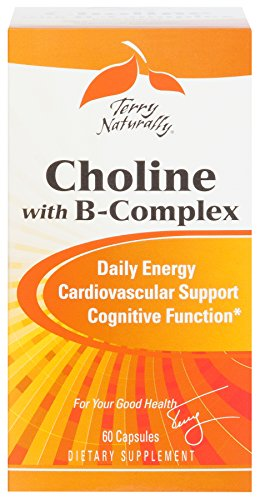 Terry Naturally Choline with B-Complex - 60 Capsules by Terry Naturally