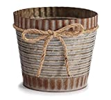 Decorative Plant Pot to Display Your Flowers and Plants Indoor and Outdoor. Perfect for Home, Patio, Lawn, Garden, Patio, Deck, Balcony, Front Porch & Backyard Decorating ideas.