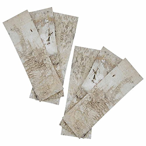 Natural Birch Bark Strips, 20 x 7 Inch Rectangle Wood Sheets, Rustic Woodland Wedding, Event Centerpiece, Venue Display, Serving, (Set of 12) by Accent Decor