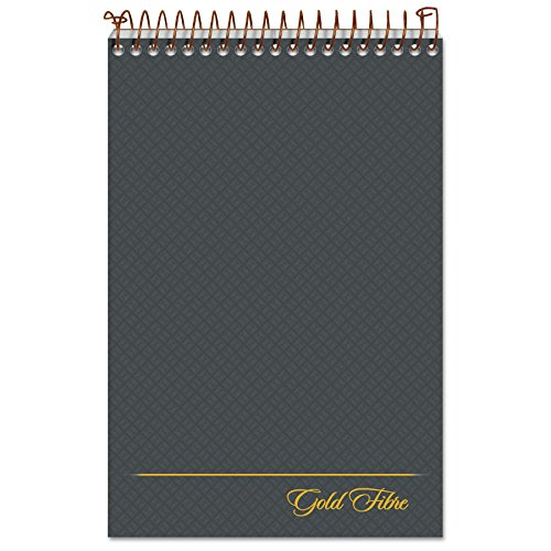Ampad Gold Fibre Steno Book, 6' x 9', Gregg Rule, Gray Cover, 100 Sheets (20-808R)
