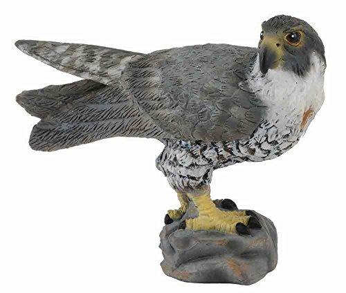 California Condor Bird - CollectA Wildlife Peregrine Falcon Toy Figure - Authentic Hand Painted Model