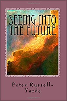 Book Seeing Into The Future: Understanding the Revelation of John: Volume 4 (Biblical Commentary)