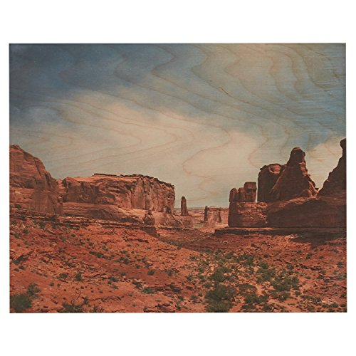 Photo Print of Southwest Desert and Blue Sky on Wood 20quot x 16quot