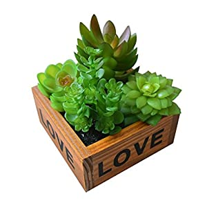 XuanMax Creative Artificial Succulent Plants with Wooden Pot Simulation Potted Flowers Aloe Faux Green Grass Bonsai Home Decoration Ornaments for Bedroom Living Room Bar Balcony Desk Table Decor 57