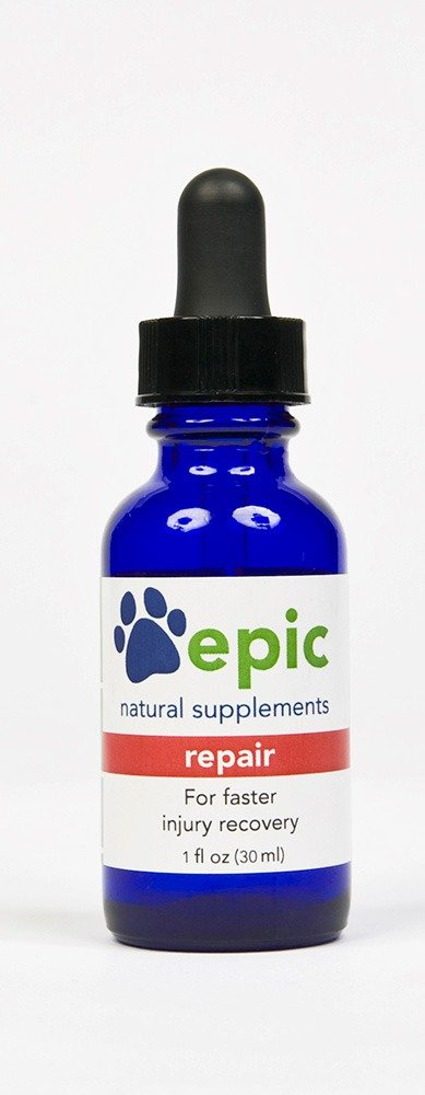 Repair - Faster Injury and Illness Recovery Naturally, Made in USA (Dropper, 2 Ounce) Epic Pet Health REPAIR2D