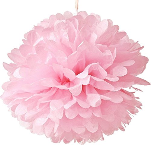 Hmxpls 10pcs Tissue Hanging Paper Pom-poms Flower Ball Wedding Party Outdoor Decoration, Premium Tissue Paper Pom Pom Flowers Craft Kit(Pink) ()
