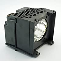 GOLDENRIVER Y67-LMP TV Replacement Lamp