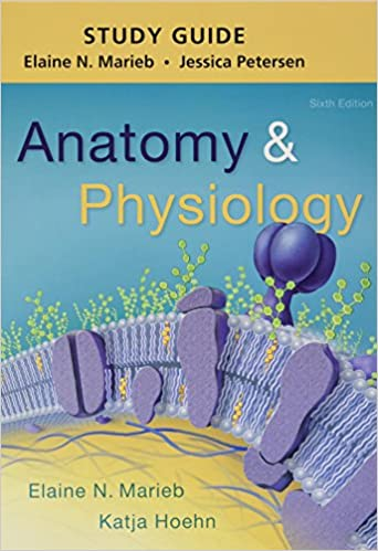 Study Guide for Anatomy & Physiology: 9780134388038: Medicine ...