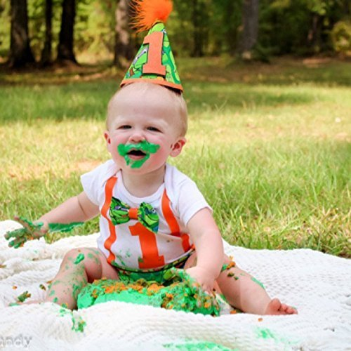Teenage Mutant Ninja Turtles First Birthday Cake Smash Outfit and Onesie w/optional Party Hat TMNT -