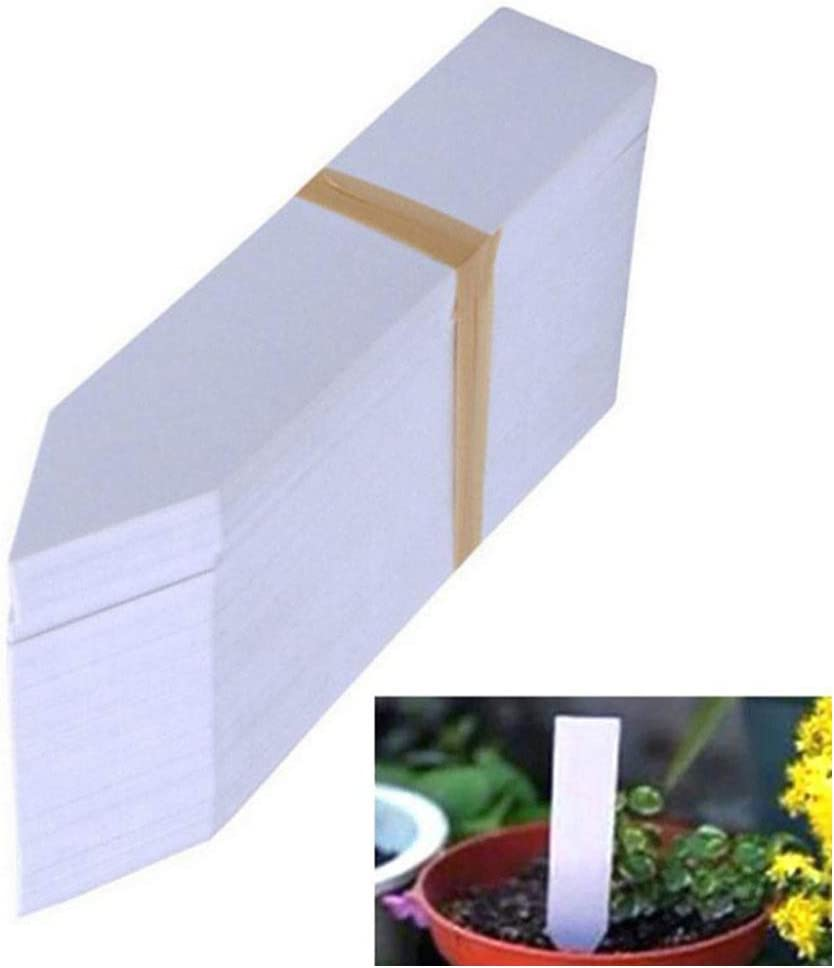 Martola 100Pcs Plastic Plant Label 10x2cm Waterproof Garden Plant Labels Use for Seed Potted Herb Flower Vegetable Name Tag Accessories