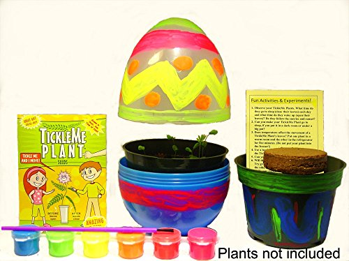 TickleMe Plant EGG Terrarium with Paint Set! Paint this LARGE 6 inch EGG & Grow a Inside. The leaves of the Plant close up when Tickled or when blown a KISS!