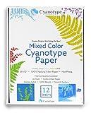 "Cyanotype 8"" x 10"" Paper - 12 pack"
