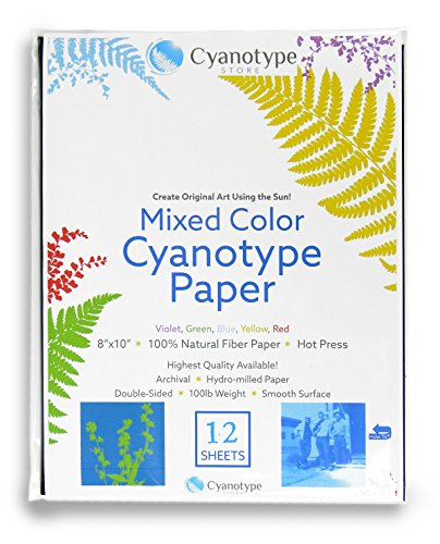 """Cyanotype 8"""" x 10"""" Paper - 12 pack (Mixed)"""