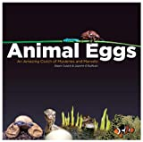 Animal Eggs, Dawn Cusick and Joanne O'Sullivan, 0983201498