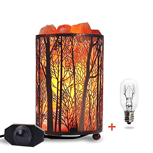 (Himalayan Salt Lamp, Salt Rock Lamp Natural Night Light in Forest Design Metal Basket with Dimmer Switch (4.1 x 6.5