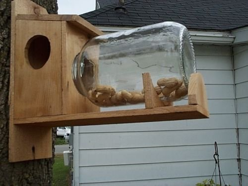 Hand Made Cedar Wood Squirrel Feeder with Gallon Food Jar