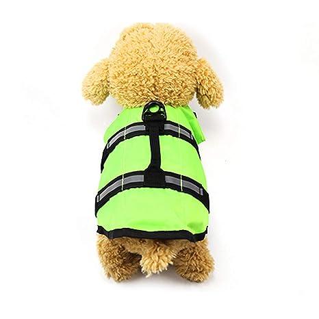 Robluee - Traje de baño para Cachorro, Chaleco Salvavidas ...
