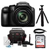 Panasonic LUMIX FZ80 4K Long Zoom Camera (18.1 Megapixels, 60X 20-1200mm Lens) + 64GB Accessory Bundle