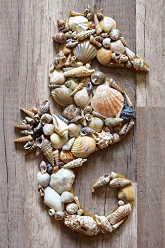 Rustic seahorse decor seashell decoration Beach house sign Nautical ornament Wood wall hanging wedding ocean Coastal sea shells Beachy Seaside seahorses by KatrinHandmadeGifts (Image #1)