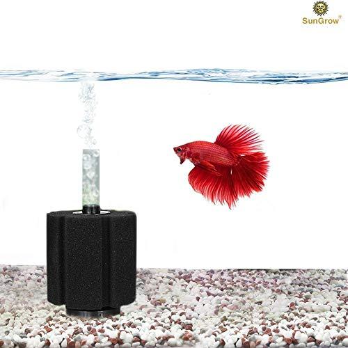 SunGrow 10-Gallon Betta Sponge Filter - Underwater Center Aquarium Filter - Works for Tropical Fish & Breeder Aquarium - Slow Current - Perfect for Fry & Small Fish - Must-Have for Aquarium Hobbyist