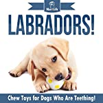 Labradors!: Chew Toys for Dogs Who Are Teething! |  Mav4Life