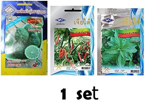 Amazon.com: Amor Thai Kaffir Cal y semillas de pimienta de ...