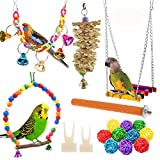 12 Packs Bird Parrot Swing Chewing Toys - Hanging Bell Birds Cage Toys Suitable for Small Parakeets, Cockatiel, Conures,Finches,Budgie,Macaws, Parrots, Love Birds