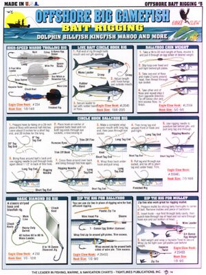 H - BAIT RIGGING - Tightlines Chart #5 (How To Rig Live Bait)