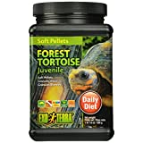 Exo Terra Soft Juvenile Forest Tortoise Food, 1lb 1.6oz / 500g by Exo Terra