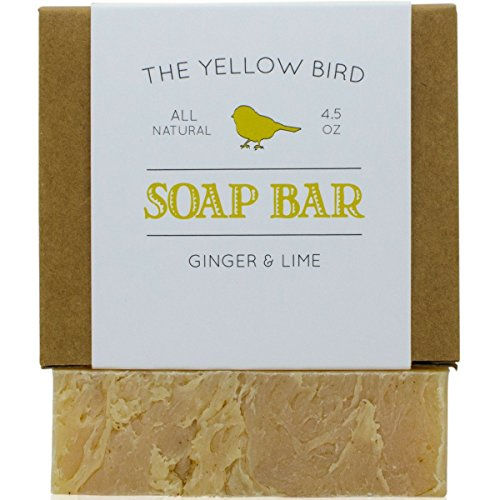 Ginger Lime Soap Bar. Gentle Aloe Vera Soap for Dry Sensitive Skin. Handmade Soap Bar for Body & Face. All Natural Antioxidant Soap for Acne, Eczema, Blemishes - Lime Soap Bar